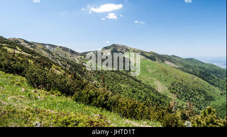 Mala Fatra mountain range panorama with highest Velky Krivan hill from hiking trail between Hromove and Steny hills - Stock Photo
