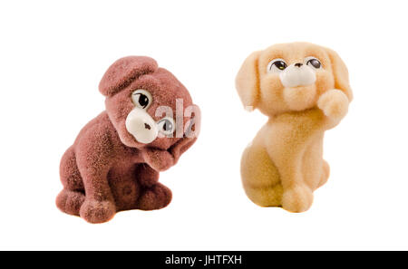 Miniature brown and beige fluffy puppies, close up, isolated, white background - Stock Photo
