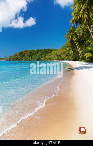 Coconut palms on the beach, Kood island, Thailand - Stock Photo