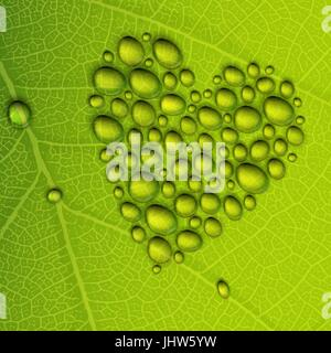 Heart shape dew drops on green leaf. Vector illustration, EPS10 - Stock Photo