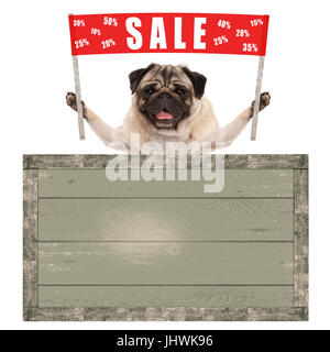 happy cute pug puppy dog holding up red banner sign with text sale % off, with vintage wooden board isolated on - Stock Photo