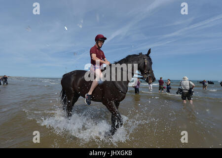 Holkham Beach, Norfolk, UK. 17th July, 2017. The Household Cavalry Mounted Regiment take part in training and relaxation - Stock Photo