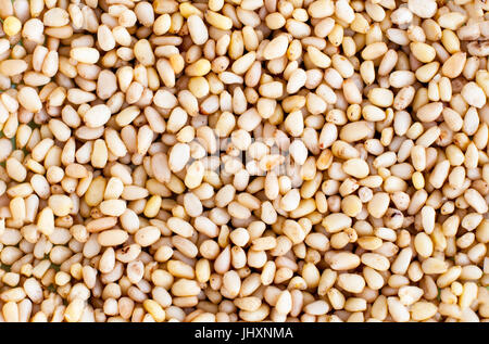Many cores of pine nuts. Texture. Screensaver. Wallpaper. - Stock Photo