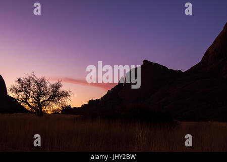 Sunset over Namib Desert with Tree - Stock Photo