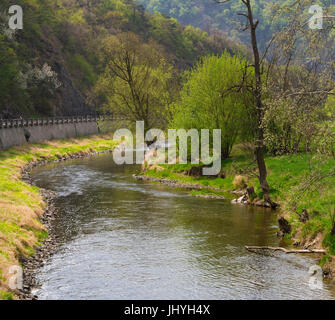 The Kamp in Stiefern, Kamptal, forest quarter, Lower Austria, Austria - River Kamp near to Stiefern, forest quarter - Stock Photo