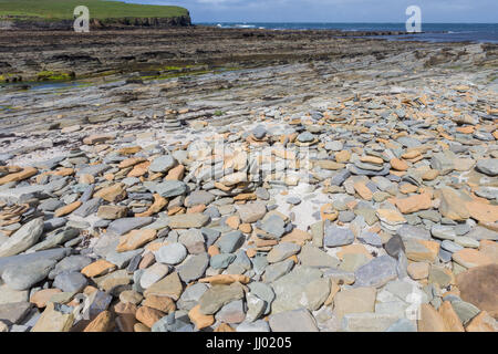 Seashore at low tide between Brough of Birsay and mainland Orkney, Scotland UK - Stock Photo