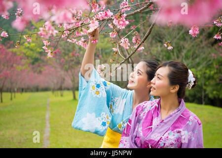 Tourist asian woman enjoying view of beautiful pink flower blooming cherry trees in sakura avenue. Young female - Stock Photo