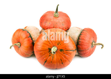 ripe pumpkin isolated on white background - Stock Photo