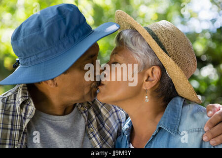 Senior couple kissing each other in park during summer - Stock Photo