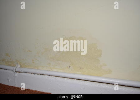 Rising damp on inside wall of old house re peeling paint poor stock rising damp on inside wall of old house re peeling paint poor decoration dpc dpm damp solutioingenieria