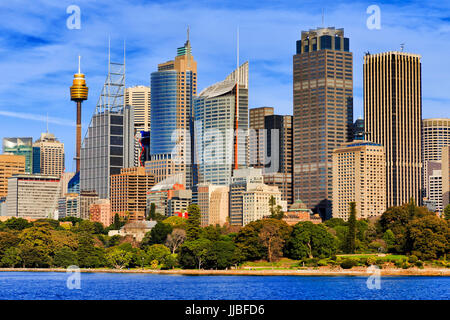 Tall towers of high-rise office buildings in Sydney city CBD standing above the Royal Botanic Gardens as seen from - Stock Photo