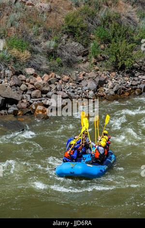White water rafting on Arkansas River, near Canon City, Colorado USA - Stock Photo