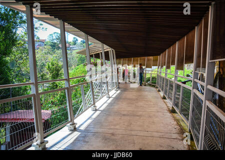 Penang, Malaysia - Mar 11, 2016. People walk on wooden foot bridge in Penang, Malaysia. Penang Hill is a hill resort - Stock Photo