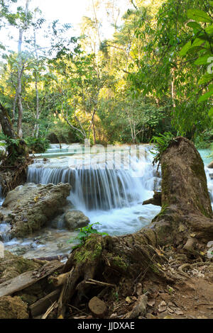 Kuang Si Waterfalls in the jungle of Laos. - Stock Photo