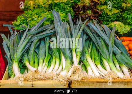 Leek on sale in a French market in Dijon, Burgundy, France - Stock Photo
