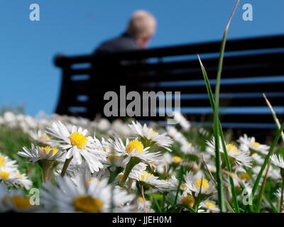 AJAXNETPHOTO. WORTHING, ENGLAND. - A SEAT IN THE SUN - PUBLIC SEATING ON THE PROMENADE OVERLOOKING THE BEACH. PHOTO:JONATHAN - Stock Photo