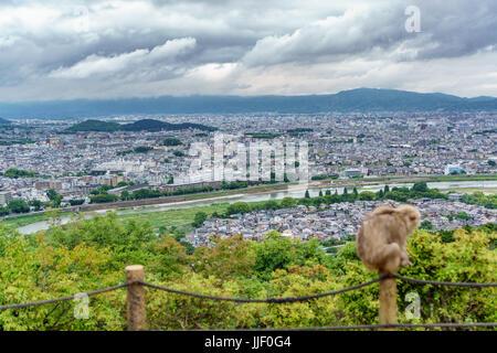 Kyoto from Arashiyama mountain with blurred monkey - Stock Photo