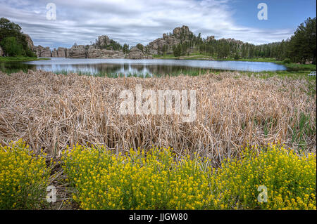 Dry grass and plants in the foreground of the famous Sylvan Lake near Custer, South Dakota. - Stock Photo
