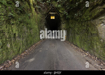 Moki Tunnel, Forgotten World Highway, Whangamomona, New Zealand - Stock Photo