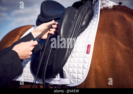 A young woman tacking up her horse prior to a ride. - Stock Photo