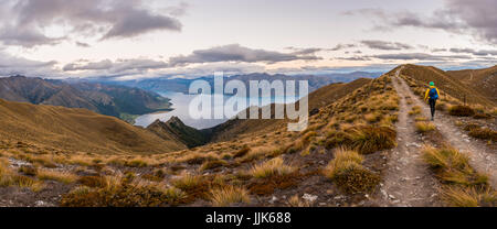 Hiking trail, Lake Hawea and mountains, view from Isthmus Peak Track, Otago, South Island, New Zealand, Oceania - Stock Photo