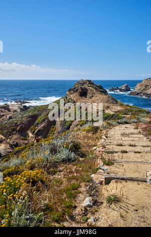 wood and sand trail winds around toward the Pacific Ocean where the ocean meets the sky
