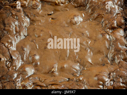 Close up view of homemade baked chocolate brownies with caramel chips - Stock Photo
