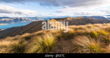 Mountain ridge, overgrown with grass, lake surrounded by mountains, Lake Hawea, view from Isthmus Peak, Otago, South - Stock Photo