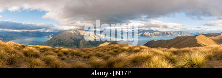 Grassland, view of two lakes surrounded by mountains, Lake Wanaka and Lake Hawea, view from Isthmus Peak, Otago, - Stock Photo