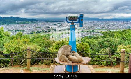 Kyoto from Arashiyama mountain with monkeys - Stock Photo