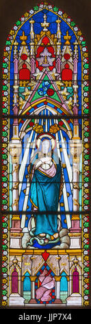 BANSKA BELA, SLOVAKIA - FEBRUARY 5, 2015: The Immaculate Conception on the windowpane of St. John the Evangelist - Stock Photo