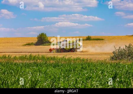 Combine harvester in action on wheat field. Palouse harvest season. - Stock Photo