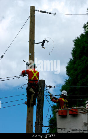 British Columbia Hydro electrical workers replacing electricity power pole - Stock Photo