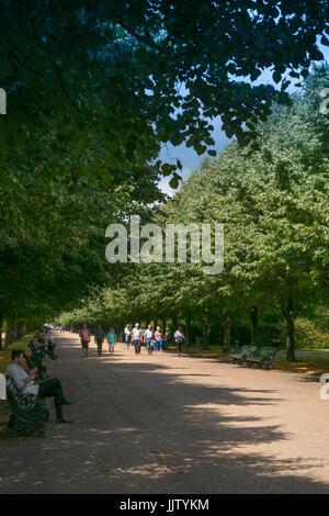 Summer in The Regent's Park, London - Stock Photo