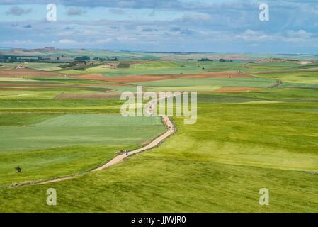 view on the landscape 'meseta', a long stretch of plateau. Camino de Santiago. Spain, Europe. - Stock Photo