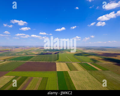 Aerial top view photo from flying drone of a land with sown green fields in countryside in summer. - Stock Photo