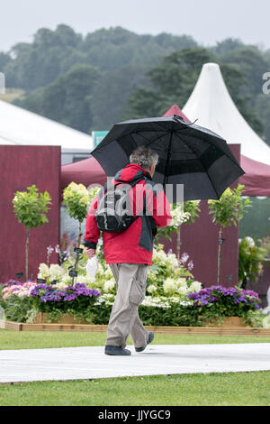 RHS Tatton Park Flower Show, Knutsford, Cheshire. UK WEATHER. 21st july 2017.  Strong winds and heavy showers water - Stock Photo