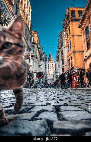View of old narrow street with the Galata Tower(Turkish: Galata Kulesi)called Christ Tower by Genoese a famous medieval - Stock Photo