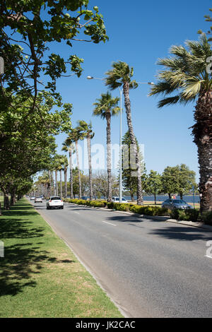 Perth,WA,Australia-November 17,2016: Palm tree lined roadway with cars and people walking the Swan River foreshore - Stock Photo