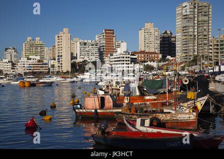 Uruguay, Punta del Este, yacht harbor, fishing boats - Stock Photo