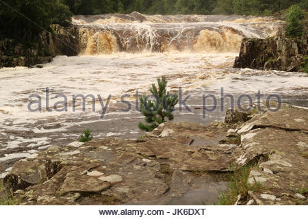Low Force Waterfall, Bowlees, Nr Middleton-in-Teesdale, Co Durham, UK 22nd July 2017 After the heavy rains in Teesdale - Stock Photo
