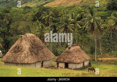 Fidschi Inseln, Viti Levu, Navala, Landschaft, Strohhütten, Reetdächer, Wiese, Pferd, grasen Südsee, Insel, Dorf, - Stock Photo