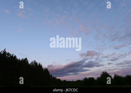 Sunset in the sky over the forest on a summer evening - Stock Photo
