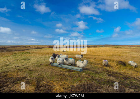 Vistas from the Outer Hebrides - Stock Photo