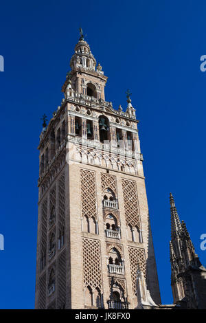 Spain, Andalucia Region, Seville Province, Seville, The Cathedral, the Giralda tower - Stock Photo
