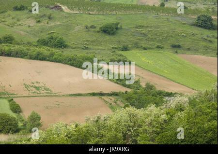 Serbien, Provinz Vojvodina, Sremski Karlovci, Felder, Frühling, Nationalpark Fruska Gora, - Stock Photo