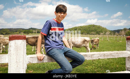 Everyday life for young farmer with cows in the countryside. Peasants work in South America with livestock in family - Stock Photo