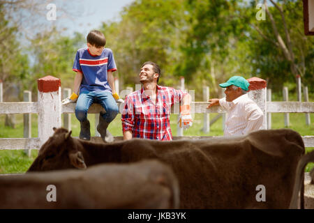 Everyday life for farmer with cows. Peasant work in South America with livestock in family country ranch. Happy - Stock Photo