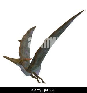 Pteranodon Reptile Wings Up - Pteranodon was a flying carnivorous reptile that lived in North America in the Cretaceous - Stock Photo