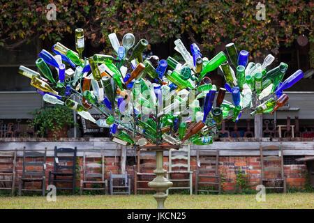 USA, North Carolina, Chapel Hill, bottle tree - Stock Photo